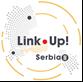 Link Up! Serbia II
